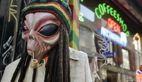 Кофешопы Нидерландов под угрозой исчезновения