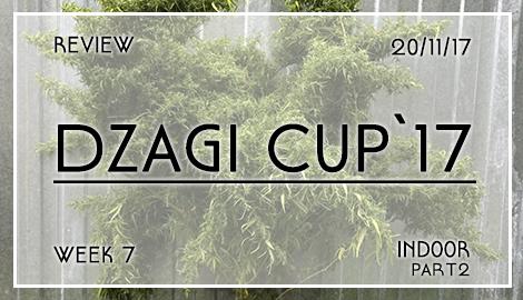 Новости DzagiCup17: Обзор 7 недели индора. Ч.2