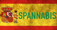 Spannabis. История и победители