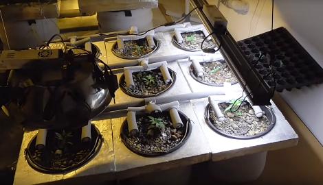 Видео: Обзор и тестирование лампы MH-SP-250 MARS HYDRO