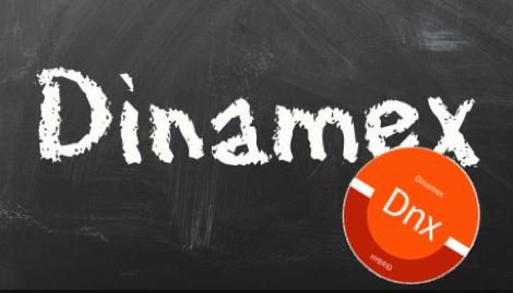 Dinafem: «Мы хотели посвятить сорт старой школе и создали Dinamex»