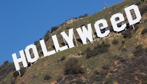 Автор шутки над надписью Hollywood сдался полиции