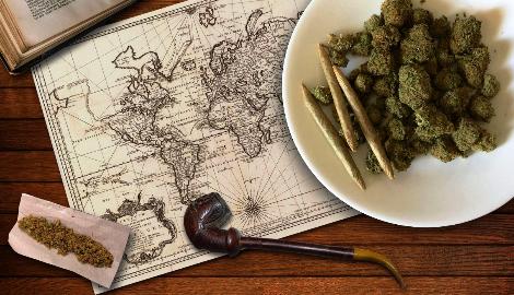 6 000 лет. История медицинской марихуаны