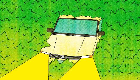 Насколько опасно вождение в накуренном состоянии?