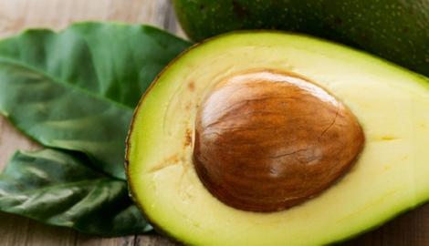 Личный опыт: выращивание авокадо из косточки