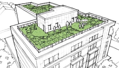 Сад, на крыше дома твоего