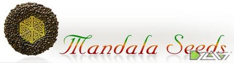 mandala-seeds-logo.jpg