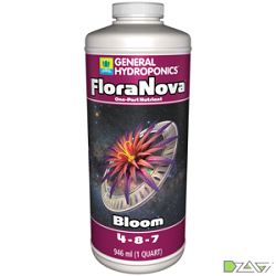 FloraNovaBloom_Quart.png