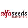 ALFASEEDS
