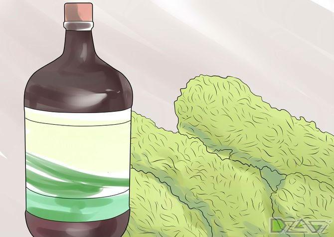 Гашишное масло своими руками
