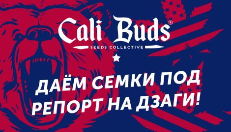 Cali_banners_470.png