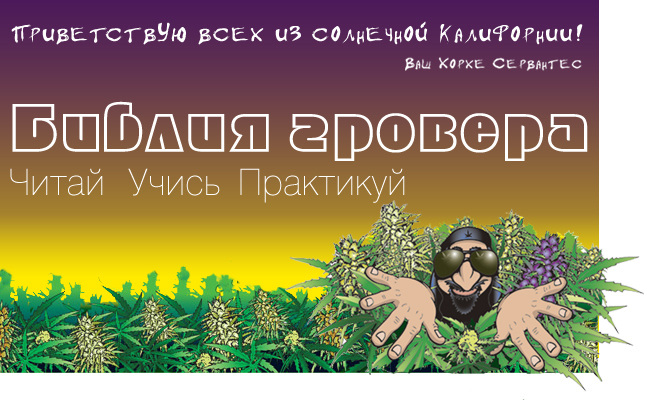 Книга о выращивании конопли